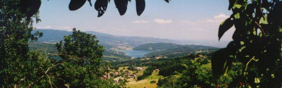 Radicata View 2